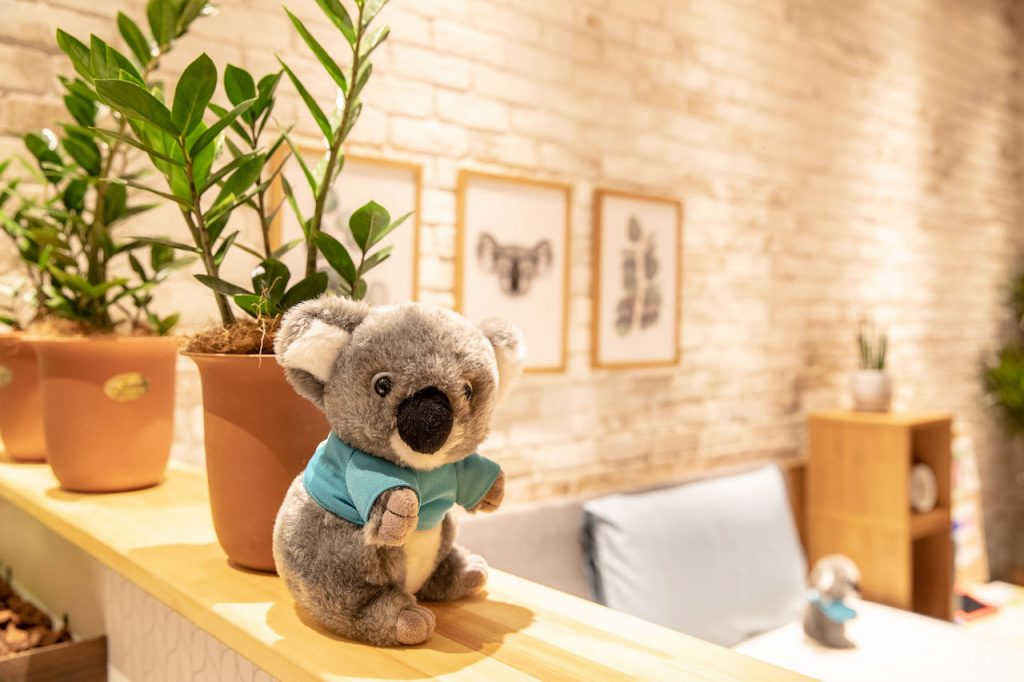 koala mattress popup plants